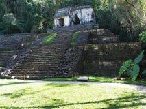Mäktig stenig pyramid på den forntida mayan nationalparken av den Palenque staden på den Chiapas staten i Mexico, landskap av dju royaltyfri fotografi
