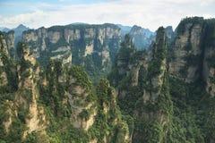 Mäktiga sandstenpelare i Yuangjiajie område Royaltyfria Bilder