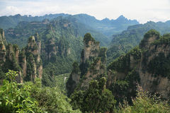 Mäktiga sandstenpelare i Yuangjiajie område Royaltyfri Fotografi