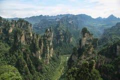 Mäktiga sandstenpelare i Yuangjiajie område Arkivfoto