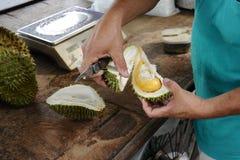 Män öppnar Durianfrukt Arkivbilder