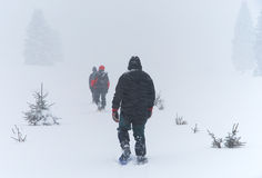 Män går till och med häftig snöstorm på snowshoes Fotografering för Bildbyråer