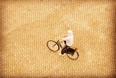 Män med cykeln Arkivbilder
