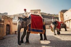 Män på elefanter nära Amer Fort Royaltyfri Fotografi