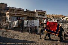 Män på elefanter nära Amer Fort Arkivbilder