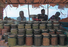 Män säljer muttrar och kärnar ur utomhus- i Kanyakumari, Indien Royaltyfria Foton