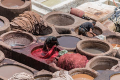 Män som arbetar i garverier Fès Marocko Royaltyfria Foton