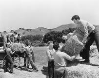 Män som arbetar på ett lantgårdpäfyllningshö (alla visade personer inte är längre uppehälle, och inget gods finns Leverantörgaran arkivfoton