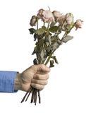 Män som framlägger döda rosor Royaltyfria Foton