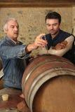 Män som kontrollerar kvalitet av wine royaltyfri foto