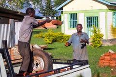 Män som lastar av pickupet Royaltyfria Bilder