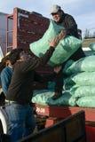 Män som lastar av säckar med foder från en lastbil Arkivbild
