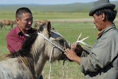 Männer arbeiten mit Fohlen, circa Harhorin, Mongolei Lizenzfreie Stockfotos