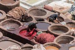 Männer, die in den Gerberei Fès Marokko arbeiten Lizenzfreie Stockfotos