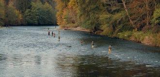 Männer, die im Fluss fischen Stockbild