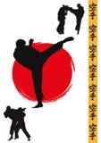 Männer, die Karate demonstrieren Lizenzfreie Stockfotos