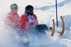 Männer reiten traditionellen Hornschlitten von Alpiglen zu Grund in Grindelwald, die Schweiz lizenzfreie stockfotografie