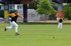Männer spielen Kricket in Victoria-Park Auckland, Neuseeland Lizenzfreie Stockfotos