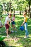 Männer und Frauen, die neue Bäume und das Freiwillig erbieten pflanzen stockfotos