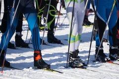 Männer und Frauenskifahrerskifahren im Winter, Skimarathon lizenzfreie stockfotos