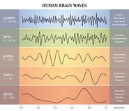 Människa Brain Waves Diagram/diagram/illustration Royaltyfria Bilder