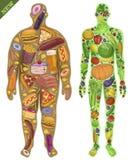 Människa som är tunn, fett Näring mat nytt också vektor för coreldrawillustration Arkivbild