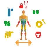 Människan tränga sig in med symboler av sportutrustning Fotografering för Bildbyråer