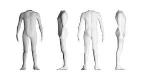 Människokroppar med inget huvud model white för bakgrund _ Arkivbild