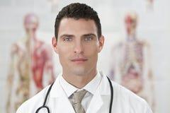 Männliche Anatomie-Diagramme des Doktor-In Hospital With Human Stockfotografie