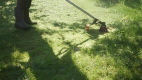Männliche Arbeitskraft mit TreibstoffRasenmähertrimmer mit dem Motor, der Gras an einem sonnigen Sommertag schneidet Schnitt des  stock video footage