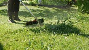 Männliche Arbeitskraft mit TreibstoffRasenmähertrimmer mit dem Motor, der Gras an einem sonnigen Sommertag schneidet Schnitt des  stock video