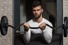 Männliche Athleten-Doing Heavy Weight-Übung für Bizeps Lizenzfreies Stockbild