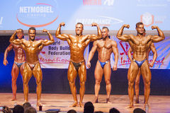 Männliche Bodybuilder biegen ihre Muskeln und zeigen ihr bestes physiqu Lizenzfreie Stockfotos