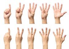 Männliche Hände, die von ein bis fünf lokalisiert zählen lizenzfreie stockbilder