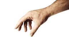 Männliche Hand Stockbild
