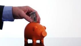 Männliche Hand, die einen Dollarschein in ein Sparschwein einsetzt stock footage