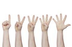 Männliche Hand, die Finger von einem bis fünf zeigt Lizenzfreie Stockbilder