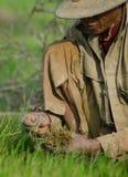Männliche Reisarbeitskraft duckt sich und greift neue grüne Reistrieb zu vor Lizenzfreies Stockbild