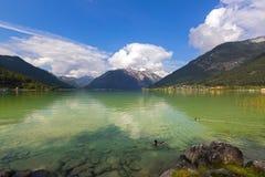 Männliche Stockenten, die im Achensee See im Schatten des blauen Grüns von f schwimmen Stockfotos