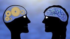 Männliche und weibliche Gehirne stock footage