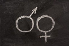 Männliche und weibliche Geschlechtssymbole auf Tafel Stockbild