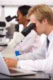 Männliche und weibliche Wissenschaftler, die Mikroskope im Labor verwenden Stockbilder