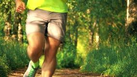 Männlicher athletischer Läufer, der in den Park an einem sonnigen Sommertag läuft stock footage