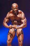 Männlicher Bodybuilder biegt seine Muskeln und zeigt seine beste Konstitution Lizenzfreie Stockfotografie