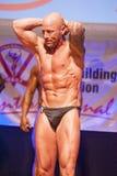 Männlicher Bodybuilder biegt seine Muskeln und zeigt seine beste Konstitution Stockfoto