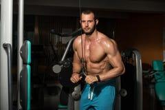 Männlicher Bodybuilder, der Schwergewichts- Übung für Trizeps tut Lizenzfreies Stockbild