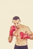 Männlicher Boxer bereit, mit Boxhandschuhen zu kämpfen Lizenzfreie Stockfotos