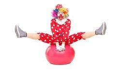 Männlicher Clown, der an einem pilates Ball durchführt Stockbild