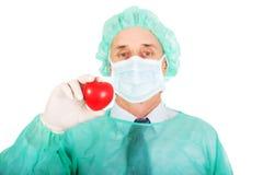 Männlicher Doktor, der Herzmodell hält Stockfoto