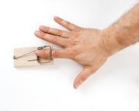 Männlicher Finger abgefangen durch Mäusefalle Stockbild